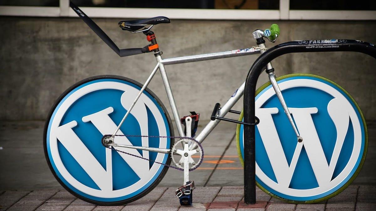 Stormchasers Digital We Make WordPress Work